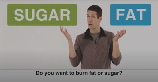 Atkins diet video